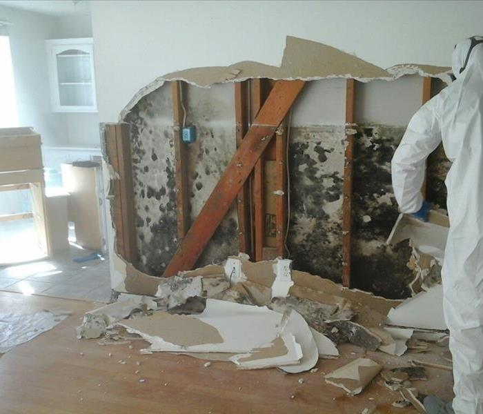 Mold remediation and damage in Woolwich NJ, Molds gradually destroy the things they grow on. You can