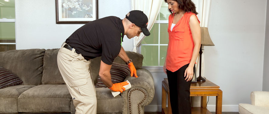 Washington, NJ carpet upholstery cleaning